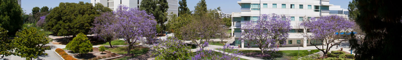 CSUF Campus Human Services Bldg